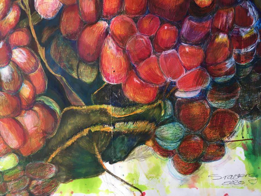 Siaofeng Nigro_The magic of the pomgranate